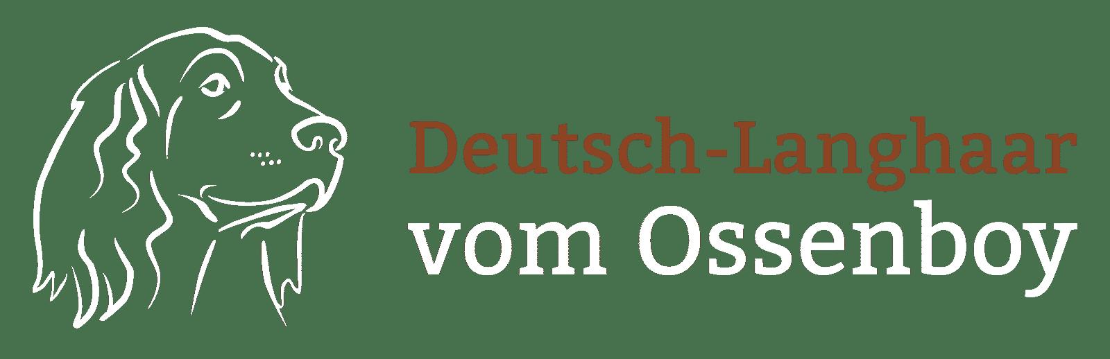 Logo vom Ossenboy